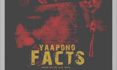 MUSIC: Yaa Pono – Facts (Sarkodie & Shatta Wale Diss) Mp3
