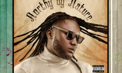 From BOC Madaki's Northy By Nature Album Which song Deserved Video First ?
