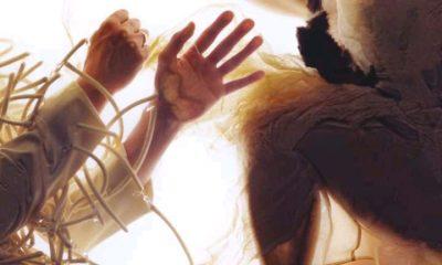 ALBUM: LUMP - Animal [Download Full Album]